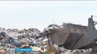 В Бирске плодородную землю превратили в свалку: репортаж «Вестей»