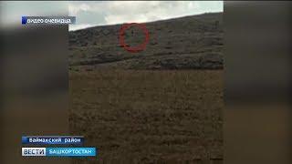 В Башкирии сняли на камеру снежного человека