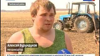Хозяйства Тамбовского района первыми в Приамурье завершили сев зерновых