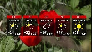 Прогноз погоды. Грозы принесут похолодание