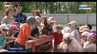 Задержание в детском саду: к малышам в гости пришла служебная собака - Вести Марий Эл