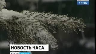 Сильный ветер и метели ожидаются 1 декабря в Иркутской области