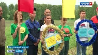 В Алтайском крае выбрали лучших пахарей