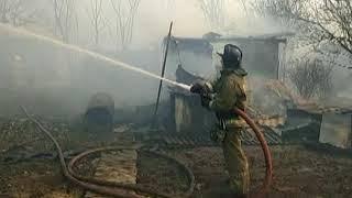Более 1 млн га территории ЕАО выгорело с начала пожароопасного сезона(РИА Биробиджан)