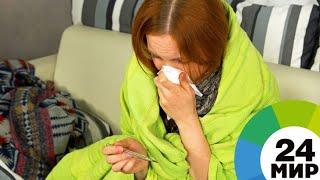 Сезон гриппа и ОРВИ закрыл школы в Петербурге и Сыктывкаре - МИР 24