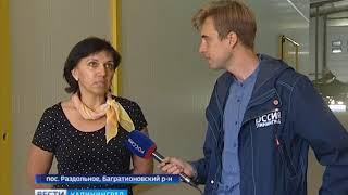 Калининградский кооператив отправил в Удмуртию свыше 100 тонн моркови
