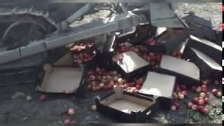 В Рыбинске изъяли и уничтожили более 700 кг санкционной продукции