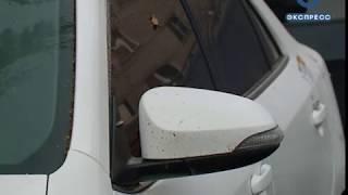 Пензенские полицейские пресекли деятельность автомошенников