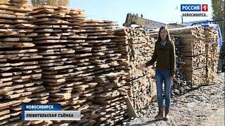 Активисты общероссийского народного фронта проверили точки продажи древесины в Новосибирске