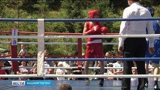 Уфа отметила международный день бокса