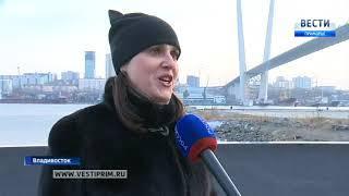 Полуторагодовалая тигрица регулярно прогуливается по набережной Владивостока