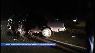 Три белгородца погибли в ДТП на выходных