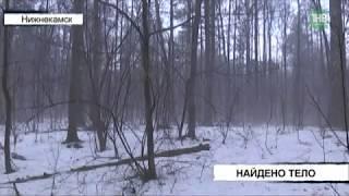 Мужчина найден мёртвым: тело обнаружил поисковый отряд в лесу за гипермаркетом - ТНВ