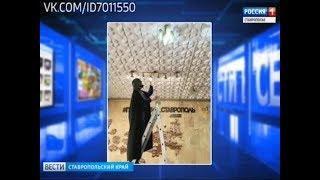 """""""Вести в сети"""". Выпуск #224"""
