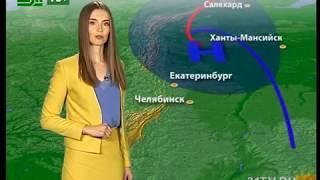 Прогноз погоды от Елены Екимовой на 17,18,19 июня