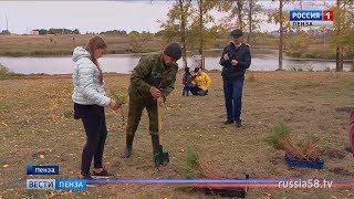 Пензенцы высадили около 1 тыс. сосен в парке «Дружба»