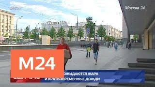 Жара установится в Москве 17 июня - Москва 24