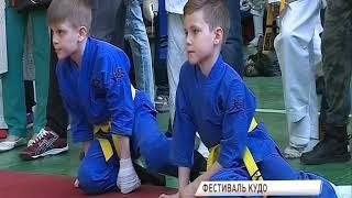 Фестиваль кудо, посвященный годовщине Победы прошел в спорткомплексе «Чайка»