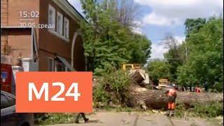 Шесть человек, включая двоих детей, пострадали из-за ветра в Москве - Москва 24