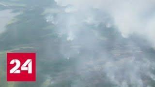 Природные пожары в Якутии будут тушить с помощью искусственного дождя - Россия 24