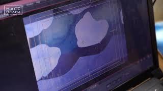 Мультфильм о Камчатке | Новости сегодня | Происшествия | Масс Медиа