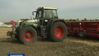 Василий Голубев: донской край занимает лидирующие позиции по экспорту зерна