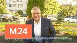 """""""Утро"""": сухая и солнечная погода ожидается в Москве 27 августа - Москва 24"""