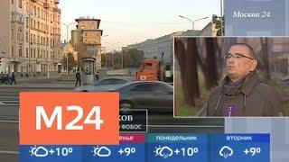 Погода в Москве побила температурный рекорд 19 века - Москва 24