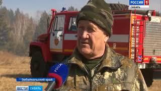 В Забайкальском крае  начали проводить профилактические отжиги травы
