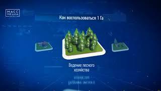 Дальневосточный гектар | Новости сегодня | Происшествия | Масс Медиа