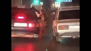 Корова выскочила из авто