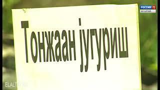В Горно-Алтайске состоялся городской спортивный праздник