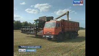 В хозяйствах Чебоксарского района параллельно с уборкой урожая  идет сев озимых культур