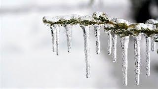 Осенняя погода в Югре бьет все рекорды