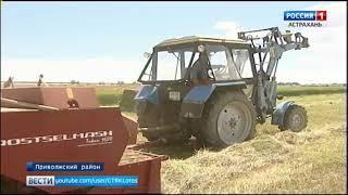 Фермеры Приволжского района первыми в Астраханской области приступили к сенокосу