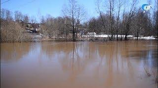 В Крестцах река вышла из берегов и подтопила несколько десятков угодий
