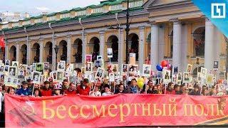 «Бессмертный полк» в Петербурге
