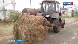 Прокуратура Карелии добилась погашения долгов по зарплате на сельхозпредприятии