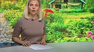 С нового года крымчане смогут прописаться на садовых участках