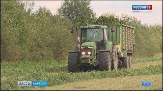 В Карелии завершают сбор урожая и заготовку кормов