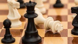 В Ханты-Мансийске стартовал Кубок губернатора Югры по шахматам