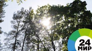 Обзор прессы: в Москву возвращается теплая погода - МИР 24