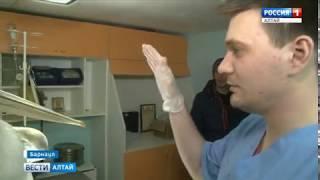 Пеликанам, зимующим в Барнауле, привезли 40 кг рыбы и подружку из Кемерова