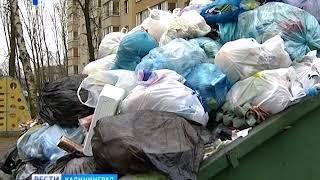 Калининградцы будут сами отвечать за контейнерные площадки у многоэтажек