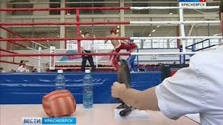 В Красноярске продолжается чемпионат и первенство Сибирского федерального округа по кикбоксингу