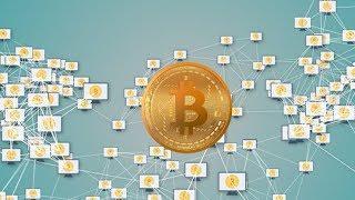 Краснодарский криптогном: как живет в южной столице цифровая валюта