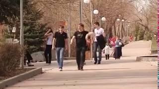 В Самарской области зафиксированы первые случаи укусов клещей