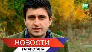 Новости Татарстана 08/10/18 ТНВ