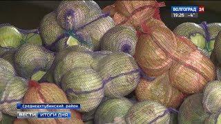 Волгоградские овощеводы активно реализуют выращенный урожай