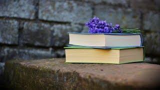 Электронные книги vs печатные: что предпочтут югорчане